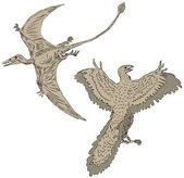 Ptérodactyle et oiseaux anciennes — Vecteur