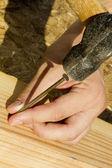 Een nagel hameren — Stockfoto