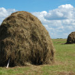 Stock Photo: Two haystacks on the meadow