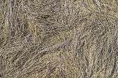 Textura de heno — Foto de Stock