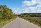 Long empty road — Stock Photo
