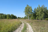 Country dirt road — Stock Photo