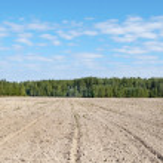 Arable landscape — Stock Photo