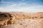 Arizona desert — Stock Photo