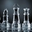 Chess pieces — Stock Photo #10569008