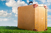 Suitcase on grass — Stock Photo