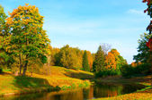 Beautiful autumn park — Stockfoto