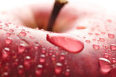 Red wet apple with big droplet, macro shot — Stock Photo