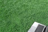 Ordinateur portable sur l'herbe verte — Photo