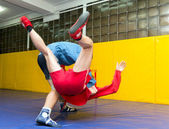 Competition for young wrestlers Sambo — Стоковое фото