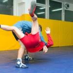Wrestlers Sambo — Stock Photo #9156740