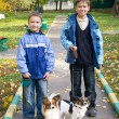 Two boys with dogs — Stock Photo #9156791