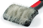 Pet grooming brush — Stock Photo