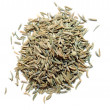 Cumin seeds — Stock Photo