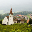Vineyard and church — Stock Photo #8566834