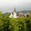 Vineyard and church - Stock Photo