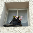 Stock Photo: Window with flowers