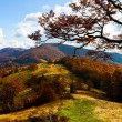 Stock Photo: Autumn mountains