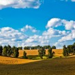Field under sky — Stock Photo