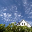 New house under clouds — Stock Photo