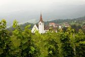 Vineyard and church — Stock Photo