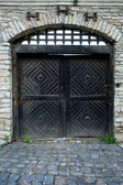 Iron door of fortress — Stockfoto