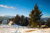 Little mountain village — Stock Photo