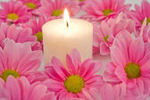 Petals and flame — Stock Photo