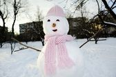 Snowman in pink — Stock Photo