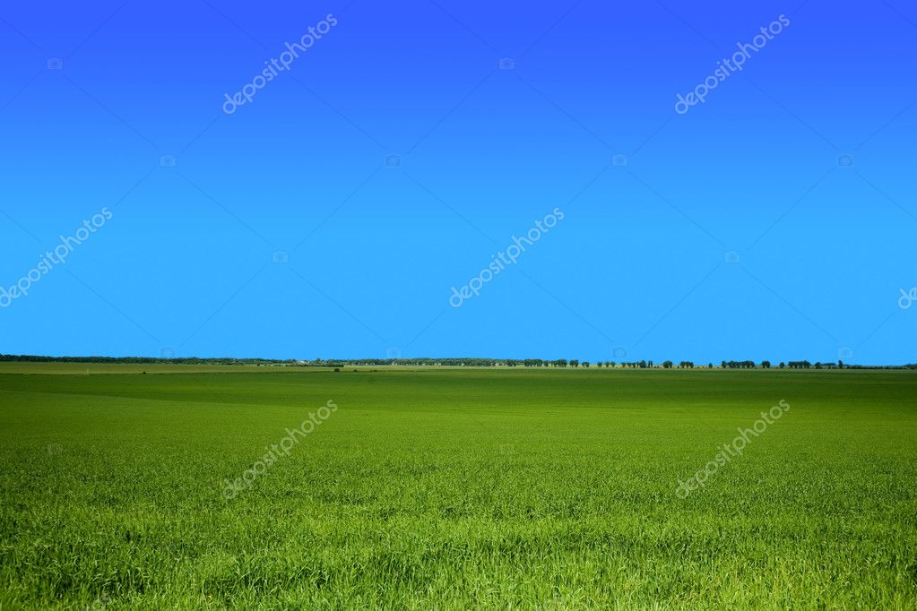 An image of green field under blue sky — Stock Photo #8564686