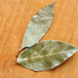 bay leaves&quot — Stock Photo