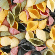 Colorful pasta shells — Stock Photo