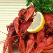 Red crayfish — Stock Photo