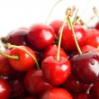Red on white — Stock Photo