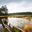 Lake in forest - Foto Stock