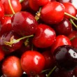 Red cherries - Foto Stock