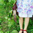 Stock Photo: Girl with beetroots