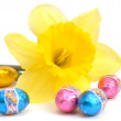 Easter decoration — Stock Photo #8575335