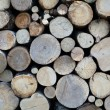 Logs — Stock Photo #8575565