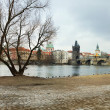 Charles bridge — Stock Photo #8576692