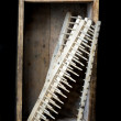 Rakes in box — Stockfoto