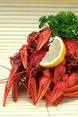 红色小龙虾 — 图库照片