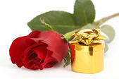 Jewelry and red rose — Stock Photo