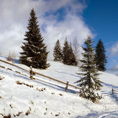 Road in winter mountains — Stock Photo