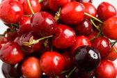 Cerezas rojas — Foto de Stock