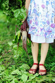 Girl with beetroots — Stock Photo