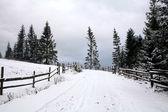 Winter weg — Stockfoto