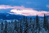 Por la noche en las montañas — Stockfoto