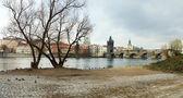 Karlsbrücke — Stockfoto