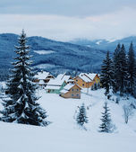 Village in forest — Stock Photo